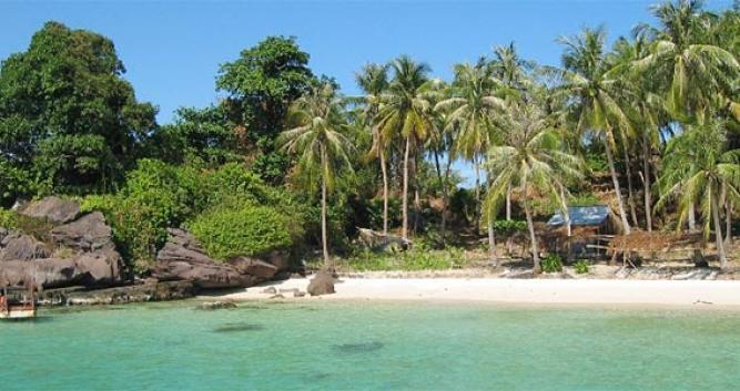 Palm trees lining the sandy beach, Phu Quoc Island, Vietnam