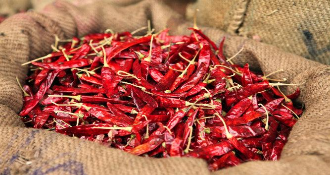 Dried red chilli's, Southern India