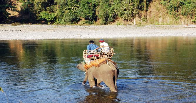 Putao-elephant-Luxury-Burma-Travel