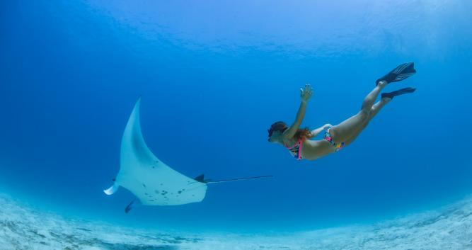 Copyright Emerald Maldives Resort & Spa
