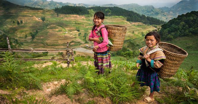 Hmong girls working the rice terraces, Sapa, Vietnam