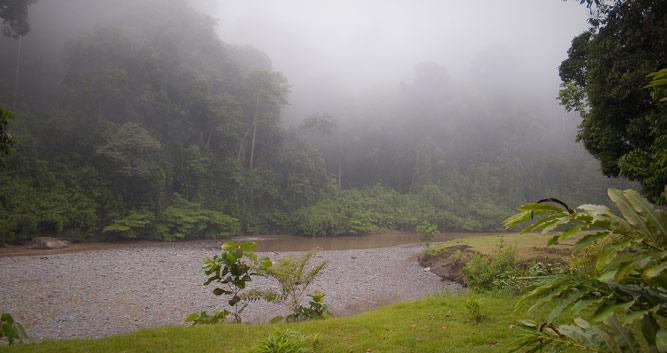 The Danum Valley, Sabah, Borneo