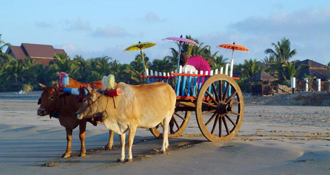 Beach-taxi-Ngapali-Beach-Luxury-Burma-Travel
