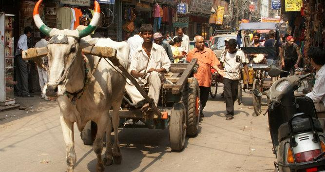 Main bazaar, Delhi, India