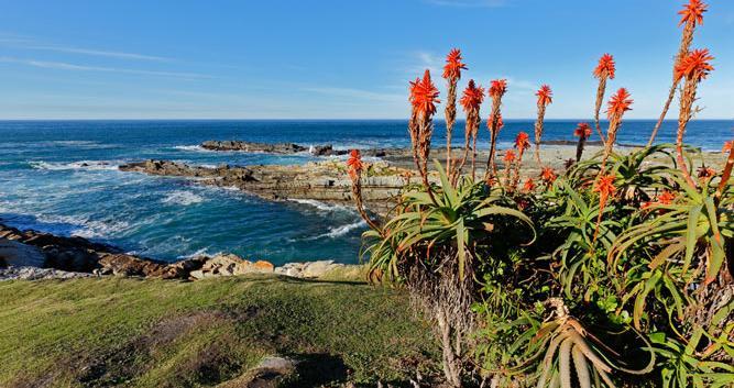 Ocean Garden Route