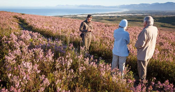 Copyright Grootbos Private Nature Reserve