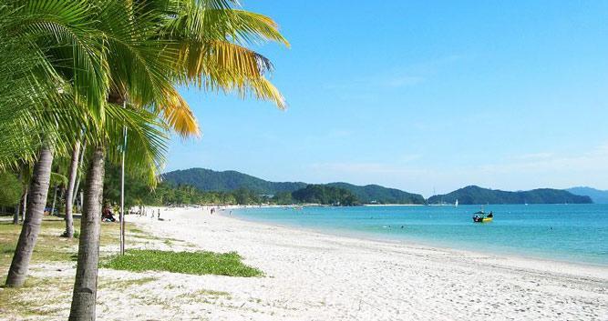 Palm fringed beach, Langkawi, Malaysia