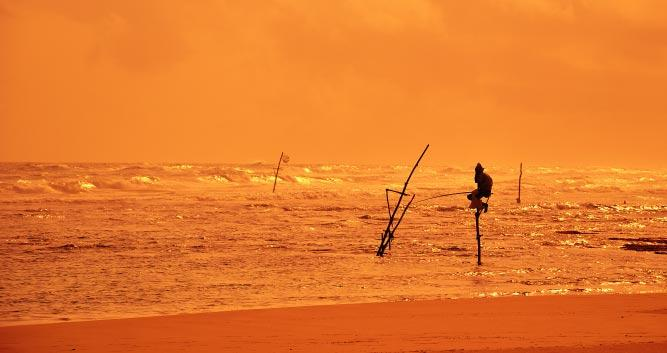 Lone fisherman at sunset, Sri Lanka