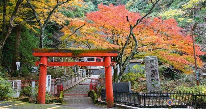 Osaka Gardens - Luxury Japan Tours
