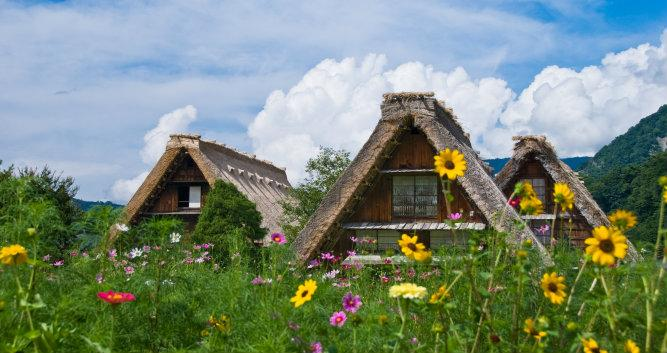 Shirakawa-Go flower farm house - Luxury Japan Tours
