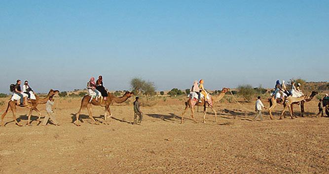 Camel trekking through the desert, Osian, India