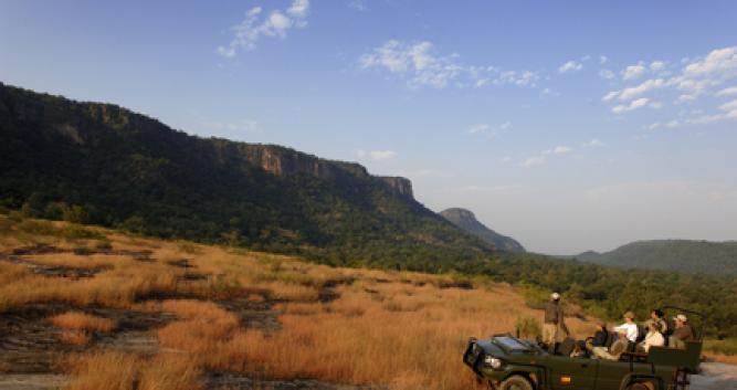 Jeep safari, India
