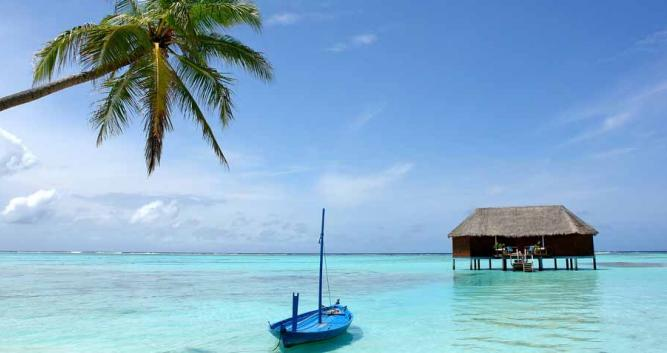Palm Tree and Boat, The Maldives, Indian Ocean