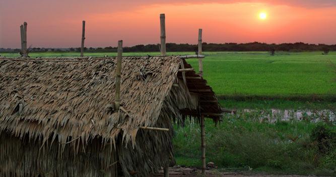Countryside sunrise, Cambodia