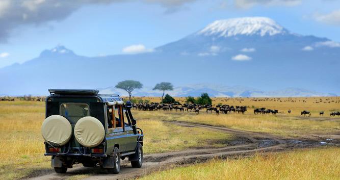Mount Kilimanjaro National Park Oasis Travel