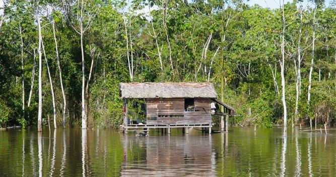 Native hut in the Amazon Rainforest, Brazil