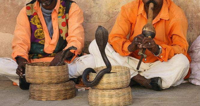 Image of snake charmers, India - Luxury India Travel